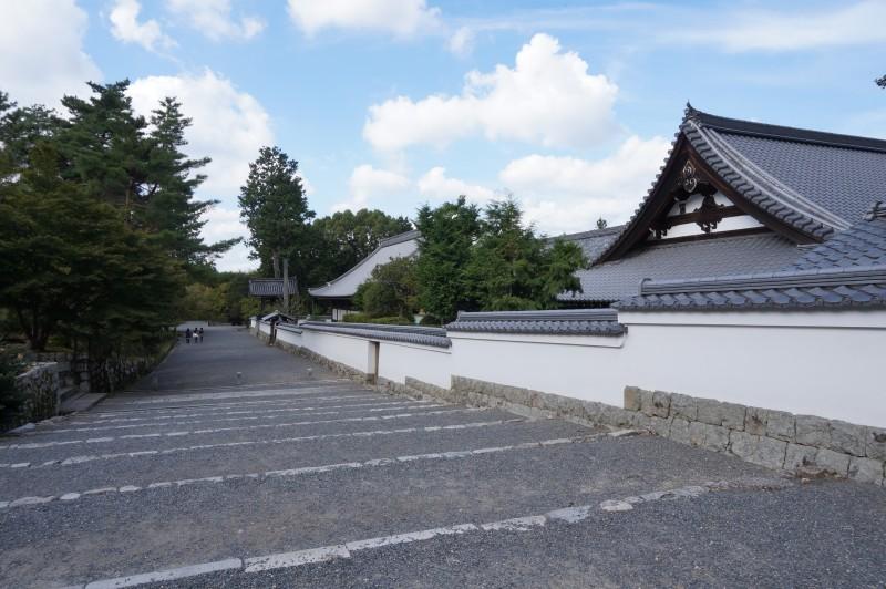 f:id:yasuu_kusayan:20171022211848j:plain